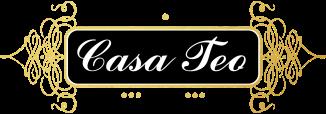3. Logo Casa Teo